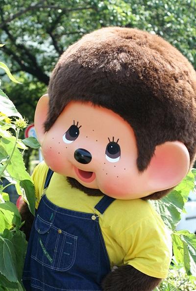 http://www.monchhichi.co.jp/files/news/kigurumi/moncchichiob.jpg